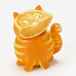 http://www.fanpop.com/clubs/orange/images/34512932/title/orange-fruit-photo