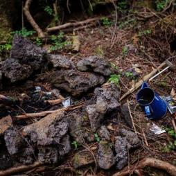 "Lost items are put on ground of the forest. Aokigahar no Jukai, also knows as Suicide Forest is a forest close to the Mount Fuji, in Yamanashi prefecture. It's the second place for the number of suicides after the Golden Brigde in San Francisco. Gus Van Sant made a movie about this forest called ""Nos souvenirs"" also knows at ""The sea of trees"" release on April 2016 in France. Yamanashi, JAPAN 17/06/2015//DATICHE_1404.017/Credit:Nicolas Datiche/SIPA/1604221421 (Newscom TagID: sfphotostwo190490.jpg) [Photo via Newscom]"